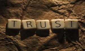 Trust Image Building Relationships